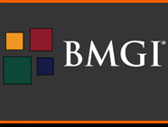 BMGI India - Management Consulting Firm