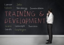 Leadership Development: An important agenda for a CEO
